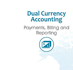 Dual Currency Accounting